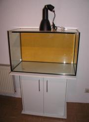 160 Liter Aquarium