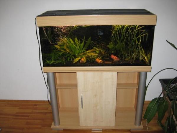 aquarium 100x40x40 neu und gebraucht kaufen bei. Black Bedroom Furniture Sets. Home Design Ideas