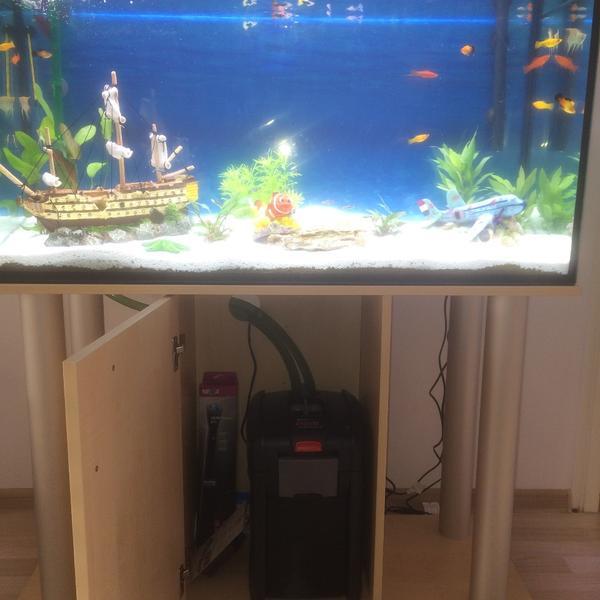 pumpen aquarium kleinanzeigen tiermarkt deine. Black Bedroom Furniture Sets. Home Design Ideas