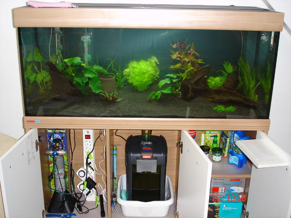 aquarium 240 kompl ausr stung top zustand in rastatt. Black Bedroom Furniture Sets. Home Design Ideas