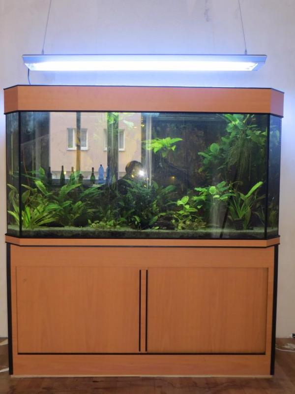 aquarium schrank neu und gebraucht kaufen bei. Black Bedroom Furniture Sets. Home Design Ideas