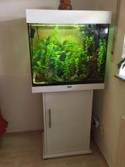 Aquarium Juwel Lido