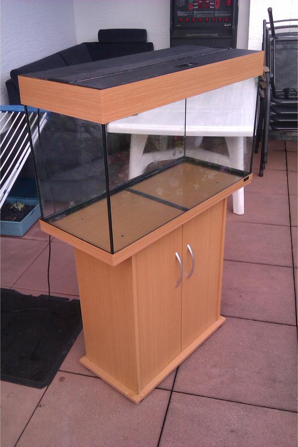 aquarium juwel rio 125 in seeheim jugenheim fische aquaristik kaufen und verkaufen ber. Black Bedroom Furniture Sets. Home Design Ideas