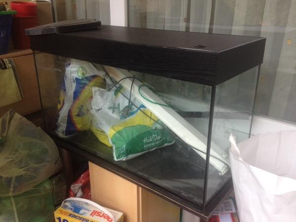 aquarium fische zubeh r in stuttgart kaufen bei deine. Black Bedroom Furniture Sets. Home Design Ideas