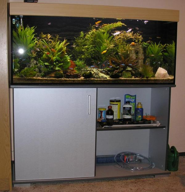 aquarium r ckw nde verkaufen kleinanzeigen tiermarkt. Black Bedroom Furniture Sets. Home Design Ideas