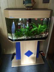 Aquarium Panorama von