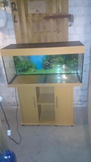 Aquarium RIo180
