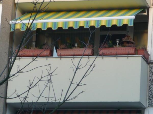 Arabella Gelenkarmmarkise In Hattingen Fenster Roll Den