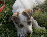 Axel, 8 Monate