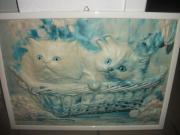 Bildrahmen Katzenmotiv