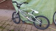 BMX Fishbone FR100