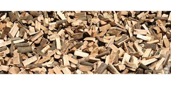 anzeige brennholz kaminholz buche apfel kostenlos gegen abholung