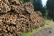 Brennholz / Kaminholz - Hartholz