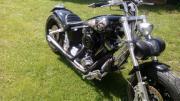 Custom Bike Evo