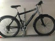 Cycle Wolf Mountainbike