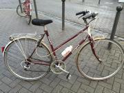 Damen Rad (Giant)