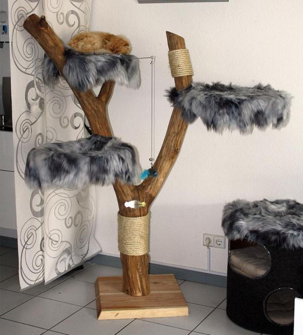 katzenbaum kratzbaum echtholz naturholz neu pictures. Black Bedroom Furniture Sets. Home Design Ideas