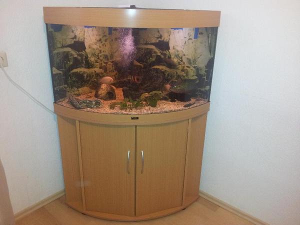 eckaquarium juwel 190 liter panoramascheibe fische zubeh r in m ssingen fische. Black Bedroom Furniture Sets. Home Design Ideas