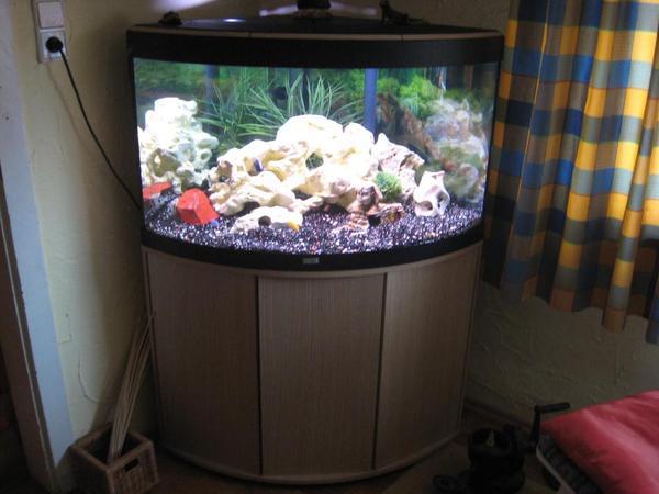 eckaquarium von fluval in sch nbrunn fische aquaristik kaufen und verkaufen ber private. Black Bedroom Furniture Sets. Home Design Ideas