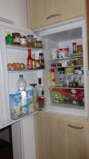 Einbau Kühlschrank, Zanussi