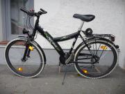 Fahrrad Pegasus Avanti