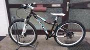 Focus Donna Fahrrad