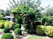 Garten mit Pachtvertrag