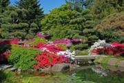 Garten zu pacht