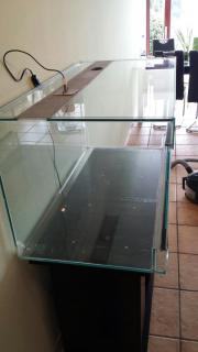 gebrauchtes terrarium in k nigsbach stein reptilien terraristik kaufen und verkaufen ber. Black Bedroom Furniture Sets. Home Design Ideas