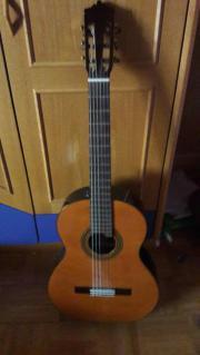 Gitarrenunterricht für Anfänger