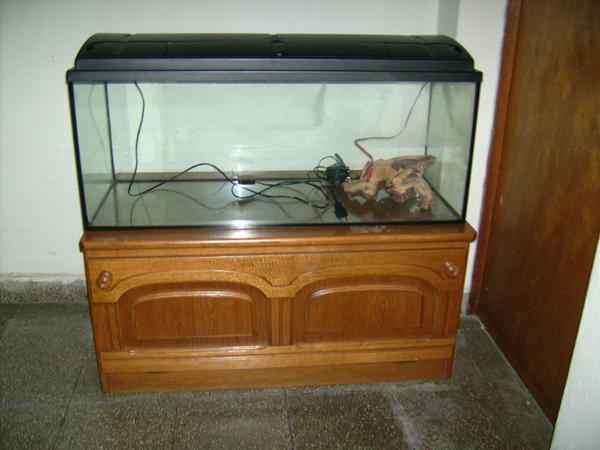 Hobby auflsung Aquarium &raquo; Fische, Aquaristik