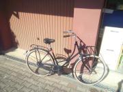 Holland Fahrrad aus