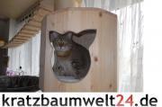 Holzhöhle für Katzen,