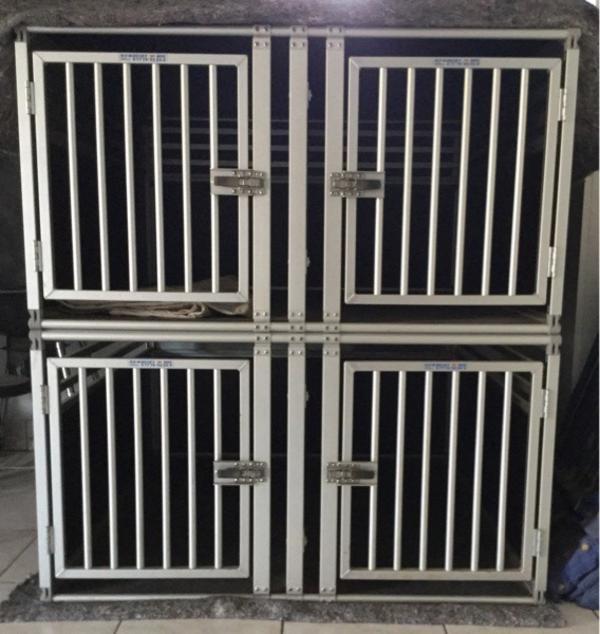 hundebox 39 gro 39 in illkirch graffenstaden zubeh r f r. Black Bedroom Furniture Sets. Home Design Ideas