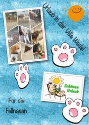 Hundetagesstätte / Pension Hockenheim