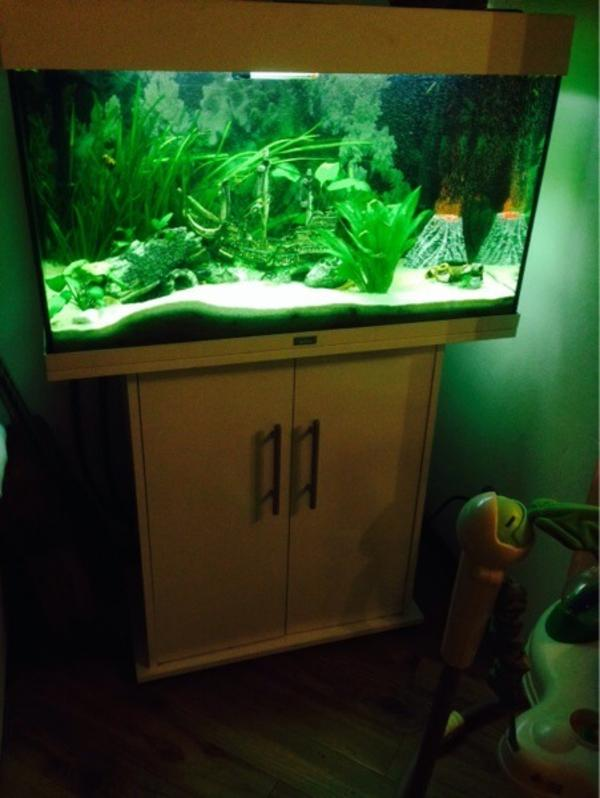 juwel aquarium 125 liter mit unterschrank und viel. Black Bedroom Furniture Sets. Home Design Ideas