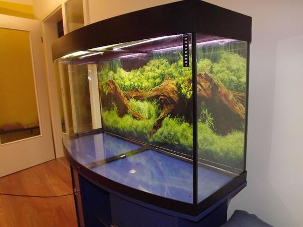 aquarium juwel neu und gebraucht kaufen bei. Black Bedroom Furniture Sets. Home Design Ideas