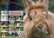 Kalender Kaninchen Hop