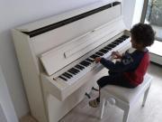 Klavier Hersteller Sauter