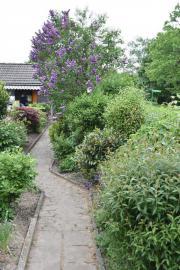 Kleingarten im Himmelgeister