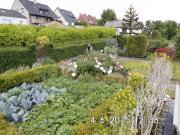 Kleingarten/Schrebergarten
