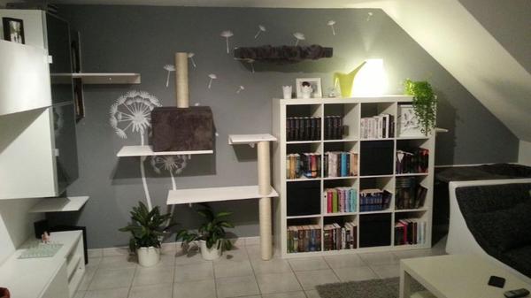 kratzbaum kratzwand f r katzen modulare regale in backnang kaufen und verkaufen ber. Black Bedroom Furniture Sets. Home Design Ideas