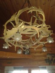 lampe aus Abwurfstangen