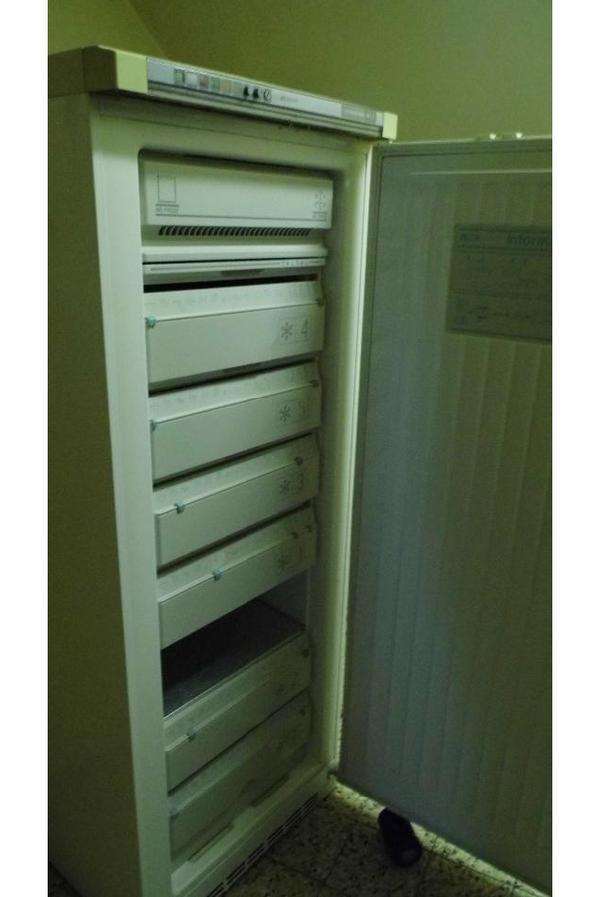 liebherr gefrierschrank gsn 230ltr in hilgertshausen. Black Bedroom Furniture Sets. Home Design Ideas