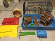 Maus / Hamster oder