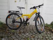 Mountainbike 24