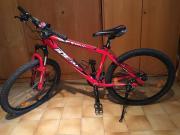 Mountainbike / Kinder / Jugend