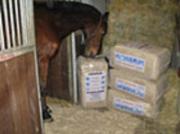 Pferdefutter - Einstreu Produkte