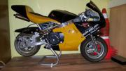 POCKET-BIKE HONDA ,