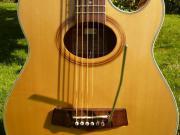Profi Akustik Gitarre
